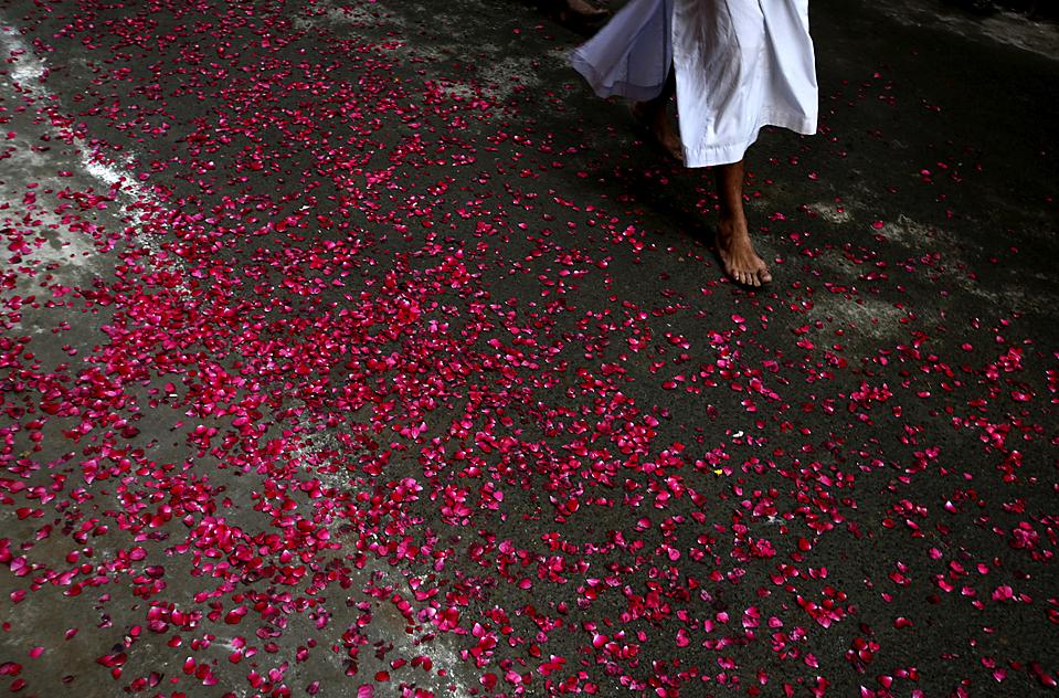 16) Ниханг, воин сикх, идет по дороге усыпанной лепестками роз во время религиозной процессии по случаю смерти гуру сикхов Тега Бахадура в Золотом храме, сикхской святыни в индийском городе Амритсар. (Альтаф Кадри/Associated Press)