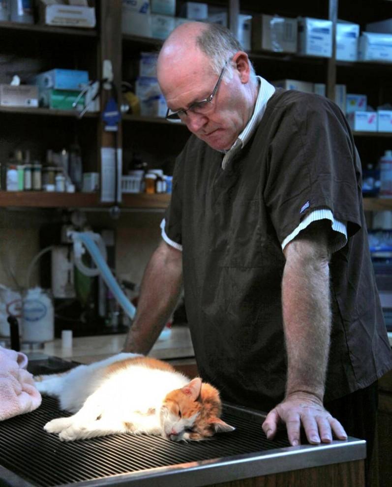 13. Доктор Ноэль Томас из ветлечебницы в Мюррее, штат Кентукки, усыпил кошку, которая страдала от боли в почках. Доктор Роберт Салли и доктор Томас начали свою практику в 1985 году, с тех пор их бизнес перерос в крупнейшую ветеринарную клинику в Каллоуэй Каунти, штат Кентукки. Доктор Томас специализируется на крупных животных и родах. «Он очень любезный человек, но настолько умный, что иногда это меня просто смущает», - говорит Линда Турман – одна из работниц клиники. (Shane Noem/2009 Mountain Workshops)