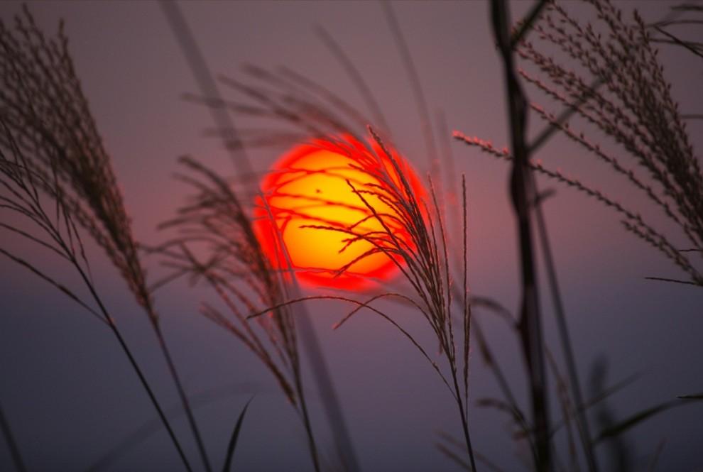 1. Луна поднимается над Биг Мидоус осенним вечером в национальном заповеднике Виржинии Шенандоа. Когда на этих территориях создавали заповедник в 1930-ых годах, отсюда переехало более 450 семей. (Raymond Gehman)