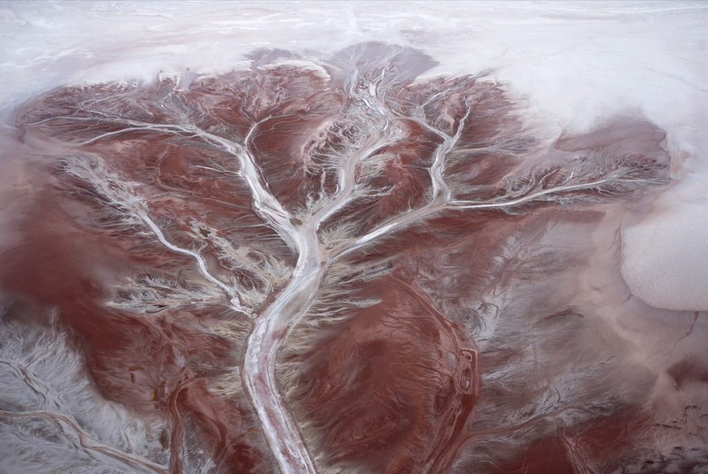 15. Вид с воздуха на узоры в Салар де Ууни – крупнейшем соленом озере в мире – похожи на огромное дерево. Обширная соленая равнина в Боливии была образована доисторическим озером. (Robert B. Haas)
