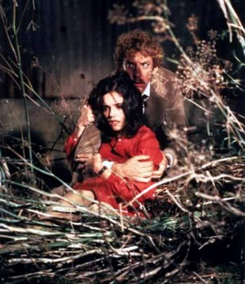 17. «Вторжение похитителей тел» 1978 года представляет собой римейк одноименного фильма 1956 года. В этих фильмах и оригинальном романе Джека Финни небольшая группка людей обнаруживает, что людей заменяют пришельцами, которых выращивают в некоем подобии коконов. (United Artists)