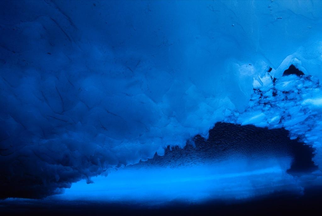 17. Лед – вид снизу – покрывает море Бофорта, занимающее водную территорию Аляски и Канады. (Paul Nicklen)