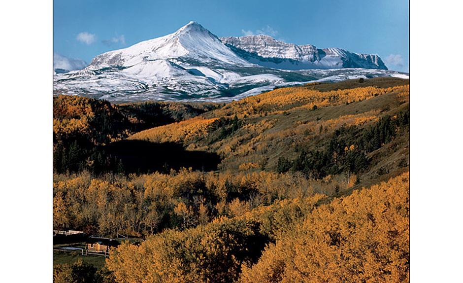 3) Желтая гора в Национальном парке Глетчер, штат Монтана, 1948