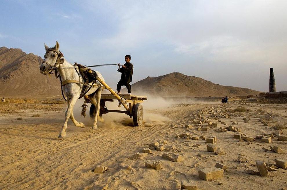 2. Афганский мальчик едет на телеге за кирпичами, которые уже готовы к обжигу в печи. Родители работают на подобных заводах и пытаются заработать дополнительные деньги, привлекая к работе своих детей. (Paula Bronstein, Getty Images)