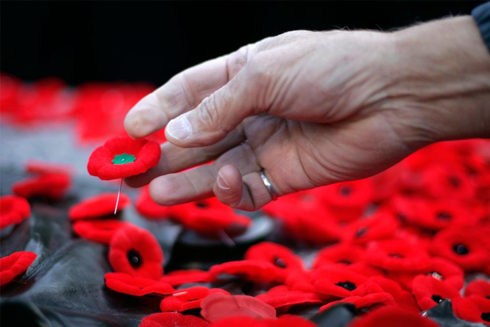 16. Женщина кладет мак на могилу Неизвестного солдата на церемонии в честь Дня Памяти жертвам войны на Национальном военном мемориале в Оттаве, Онтарио, Канада, 11 ноября 2009 года. (REUTERS/Chris Roussakis)