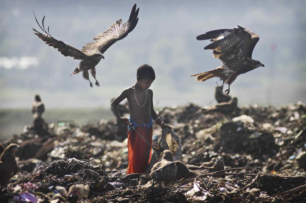 1. Беспризорник ищет материалы пригодные для повторного использования на свалке, расположенной на окраине индийского города Гаухати 19 ноября, за день до Всемирного дня ребенка. Спустя 20 лет после принятия ООН соглашения о правах ребенка больше детей стало ходить в школу, снизилась смертность, однако 1 миллиард детей по-прежнему не получает должных условий. (AP/Anupam Nath)