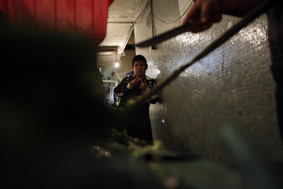 16. 12-летний Леонардо Санчез пытается вытащить иголки кактуса из рук, пока его родственник продолжает срезать кактусы на рынке Ла Мерсед в Мехико. 20 лет назад ООН приняло соглашение о правах ребенка, однако миллионы детей по всему миру страдают от насилия, голода и болезней. (AP/Gregory Bull)