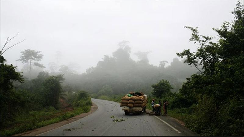 3. Эти любящие тень плоды растут во влажной тропической зоне в южной части страны. Около 10,5 миллионов человек в Западной Африке работают на небольших семейных плантациях бобов какао, площадь которых обычно составляет 7-12 акров. Рабочие отправляются вглубь лесов, чтобы купить бобы какао у фермеров и перепродать их экспортерам. Зачастую рабочие попадают вот в такие передряги со сломанным автомобилем. (Jessica Dimmock / VII Network)