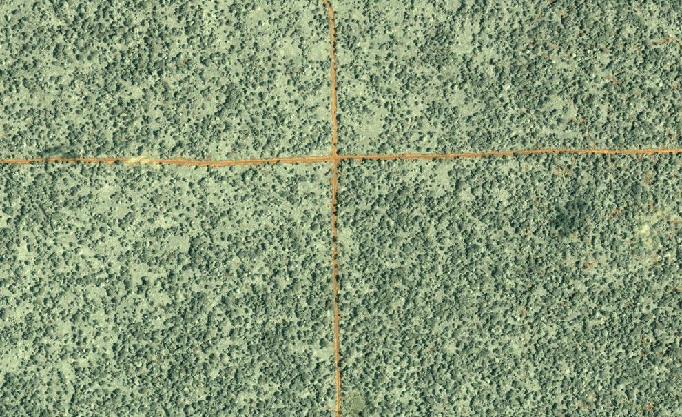18) Данная фотография леса на севере Республики Конго была сделана 27 июня 2002 года коммерческим спутником Ikonos. В центре фотографии пересекаются грунтовые лесовозные дороги (оранжевые линии). Этот снимок – один из сотни снимков, полученных с помощью коммерческого спутника и спутника агентства NASA, использовался учеными Исследовательского центра «Woods Hole» для создания карты размещения лесовозных дорог и вырубки леса на территории в 4 миллиона квадратных километров тропических африканских лесов на 3 декады грядущего 2003года (NASA /Jesse Allen, IKONOS, Nadine Laporte, Woods Hole Research Center)