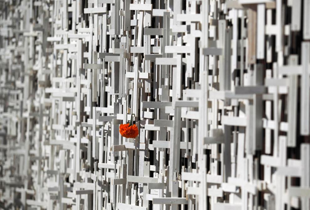 4. Календула висит на одном из крестов, которыми покрыта половина пограничной стены США-Мексика в День мертвых в Тихуане, Мексика, в пятницу 30 октября 2009 года. Добровольцы из Коалиции обороны повесили 5 100 деревянных крестов в честь 5100 мигрантов, погибших при пересечении границы с США с 1995 года. (AP Photo/Guillermo Arias)