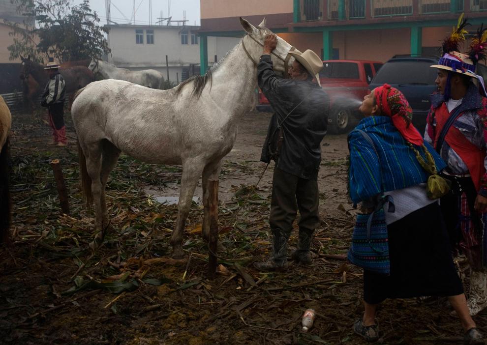 15. Женщина плюет спиртом на лошадь во время приготовления к традиционным лошадиным скачкам в День всех святых в Тодос Сантос, Гватемала, 1 ноября 2009 года. (REUTERS/Daniel LeClair)