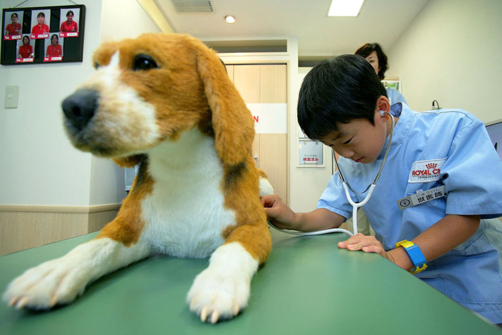 8. Ребенок обследует игрушечную собаку, играя в ветеринара, на «Неделе профессий» в «KidZania» 15 сентября. (Kiyoshi Ota/Getty Images)