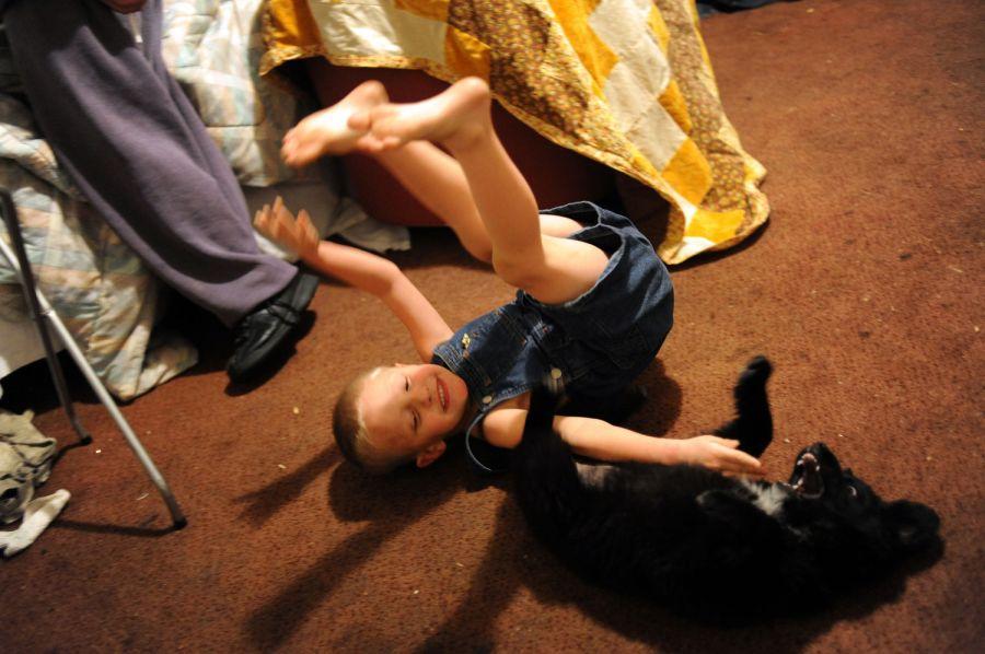 17. Пятилетний Алекс Рауз играет с щенком Миднайтом в мотеле «Triangle T Motel».