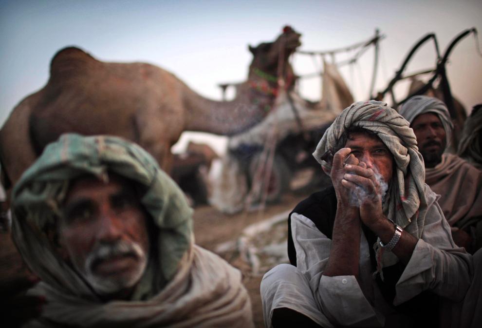 3. Погонщик верблюдов курит трубку в Пушкаре, Раждастан, утром в среду 28 октября 2009 года. (AP Photo/Kevin Frayer)