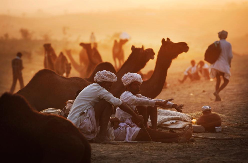 27. Погонщики верблюдов сидят рядом со своими животными на ярмарке Пушкар Мела в среду 28 октября 2009 года. (AP Photo/Kevin Frayer)
