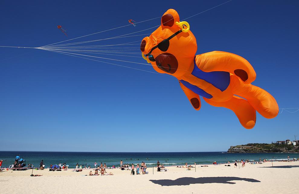 12. Воздушный змей летит во время «Фестиваля ветра» на пляже Бонди 13 сентября 2009 года в Сиднее. Это крупнейшее событие, посвященное воздушным змеям, которому в этом году исполнилось 30 лет. Оно привлекает большое количество как местных жителей, так и иностранцев, и проводится в содействии с Австралийским обществом любителей воздушных змей. (Cameron Spencer/Getty Images)