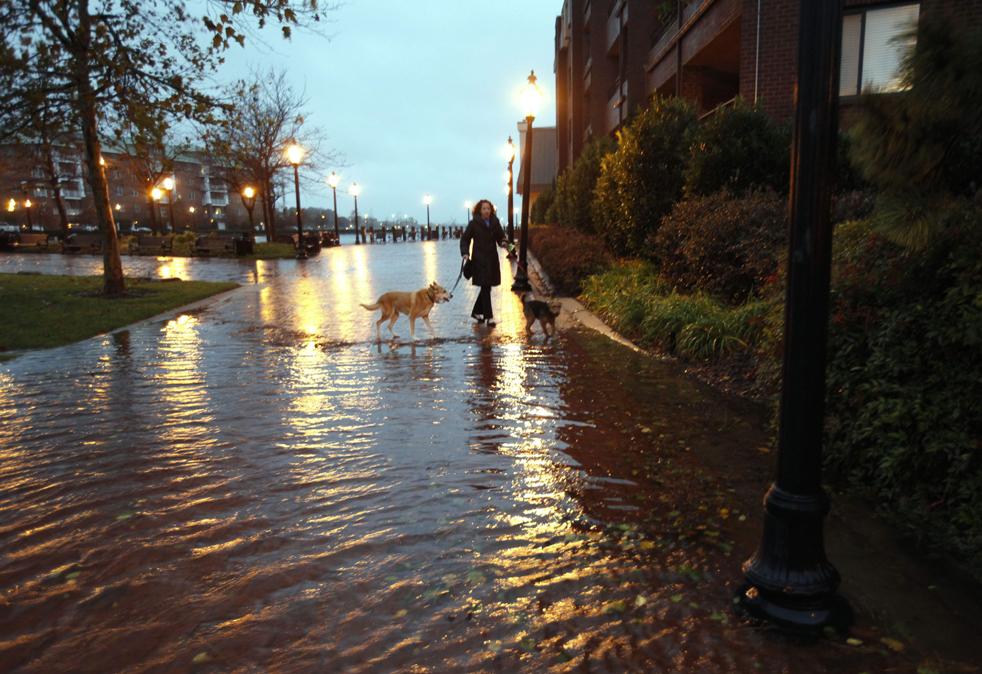 6. Лиза Кендрик выгуливает своих собак Гайдена (слева) и Локки по частично затопленной улице после урагана Ида в Норфолке, штат Вирджиния, 12 ноября. (AP / Steve Helber)