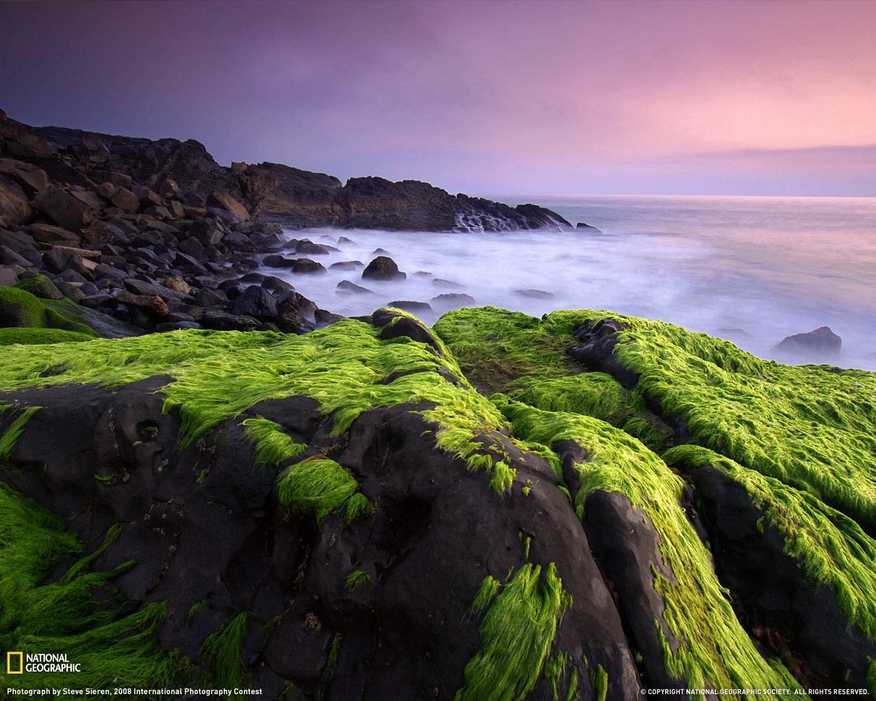 4) Горы Санта Моники.