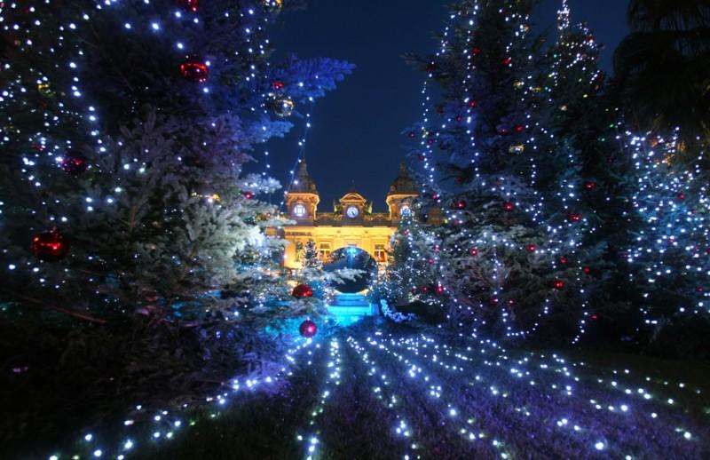 Фотографии недели: 7–11 декабря