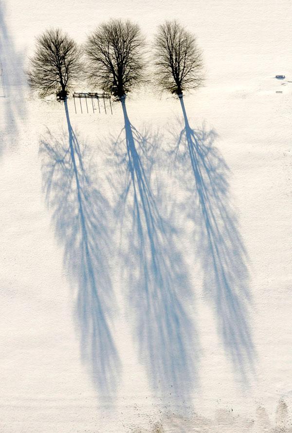 6. Три дерева на спортивном поле школы Блумсберг отбрасывают тени на снегу от заходящего солнца в Блумсберге, Пенсильвания. (AP Photo/Bloomsburg Press Enterprise, Jimmy May)