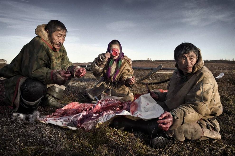 6. Ненецкая семья ест сырое оленье мясо с вермишелью. Одна семья убивает оленя каждые две недели. (Yuri Kozyrev / Consequences by NOOR)
