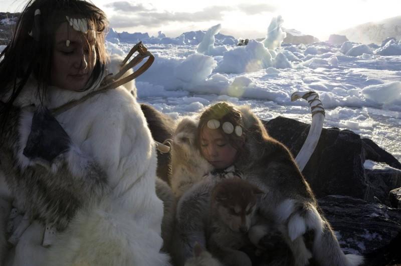 Тающие льды Гренландии