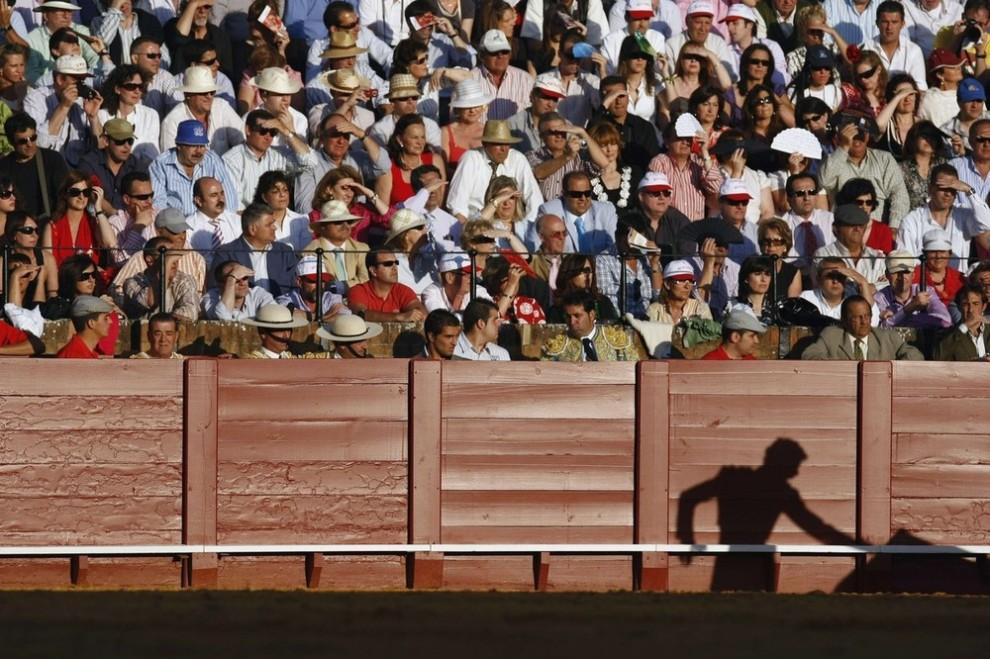 7. Тень испанского матадора Даниеля Луке на стене во время выступления с быком на корриде на арене «Маэтранза» в Севилье 29 апреля 2009 года. (REUTERS/Marcelo del Pozo)