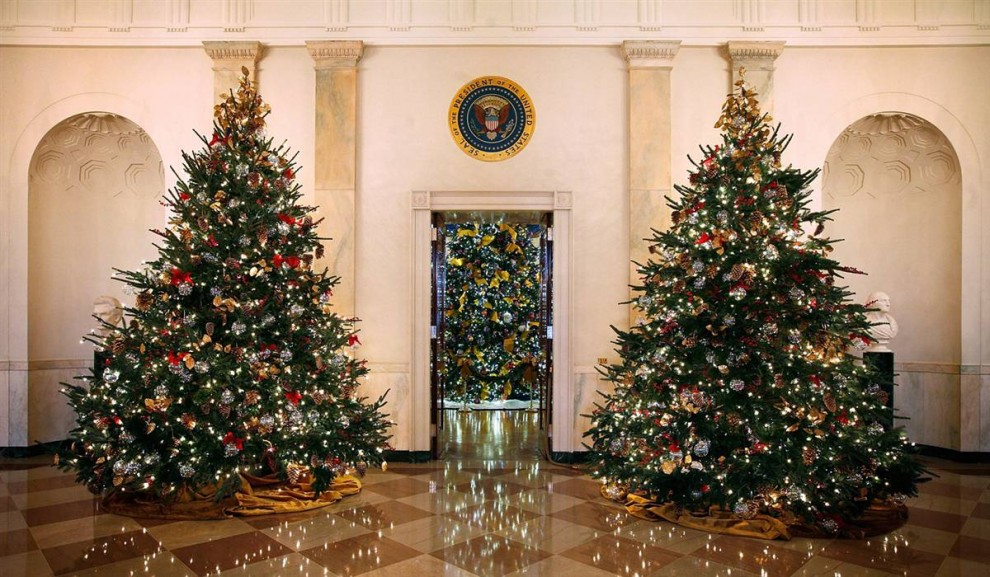 7. Рождественские елки на первом этаже Белого дома. Официальные украшения Белого дома в 2009 году чествуют память 24-ого президента США Гровера Кливленда. (Alex Wong / Getty Images)