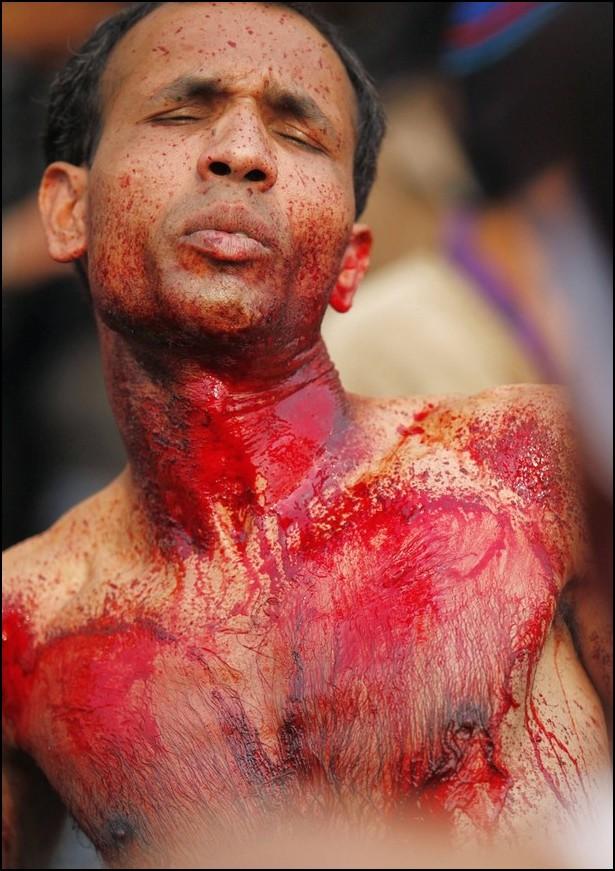7) © Reuters / Reinhard Krause / / Syiah Asyura castigates sendiri selama ini.