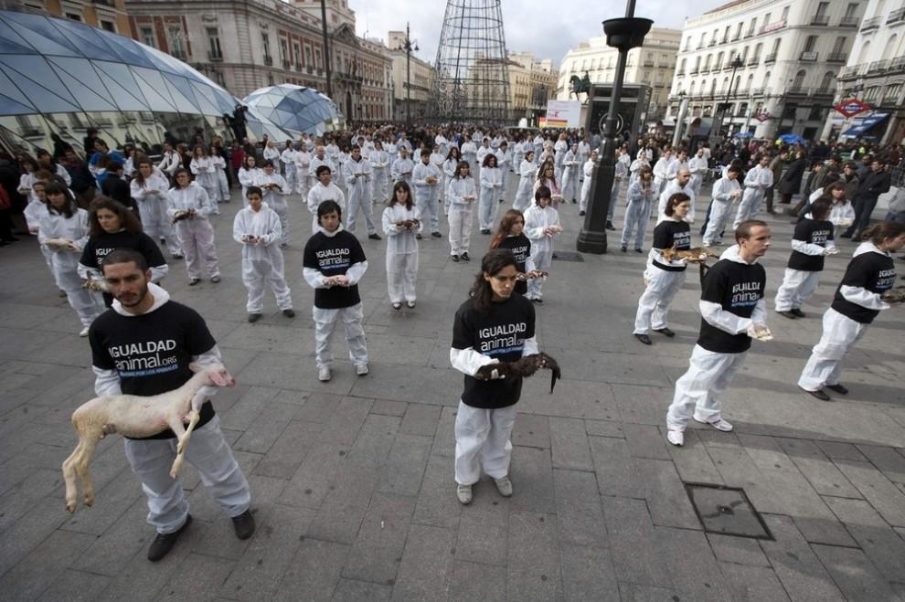 1) В воскресенье, 6 декабря участники акции протеста, одетые во все белое, собрались на центральной площади Мадрида Пуэрта-дель-Соль. (REUTERS/Paul Hanna)