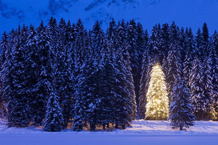 11) Дерево, украшенное праздничными огнями около швейцарского города Ароза. (AP Photo/Keystone, Alessandro Della Bella)