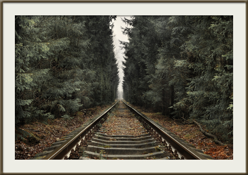 Пейзаж как объект фото-арта