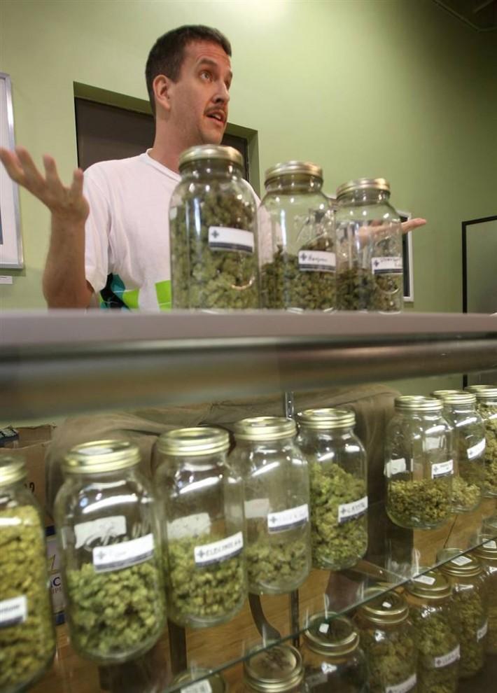 11. Дейв Уорден, ответственный за зачатки в частной клинике – некоммерческой аптеке марихуаны – демонстрирует различные типы марихуаны, доступные пациентам клиники, включая больным СПИДом, в Лос-Анджелесе. (David Mcnew / Getty Images)