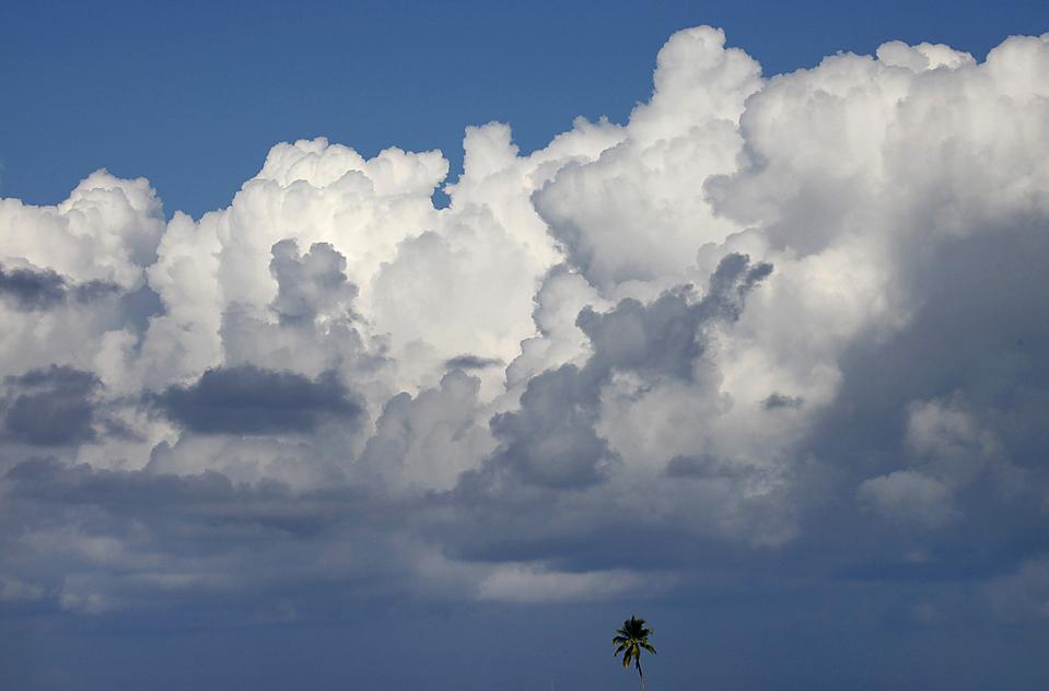3) Облака над пальмовыми деревьями в Мале Атолл на Мальдивах. (Reinhard Krause/Reuters)