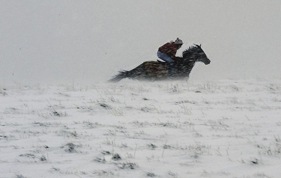 14) Конь скачет через Пеннины, небольшой высоты горы в Великобритании, расположенные в северной Англии и южной Шотландии. (John Giles/PA Wire/Associated Press)