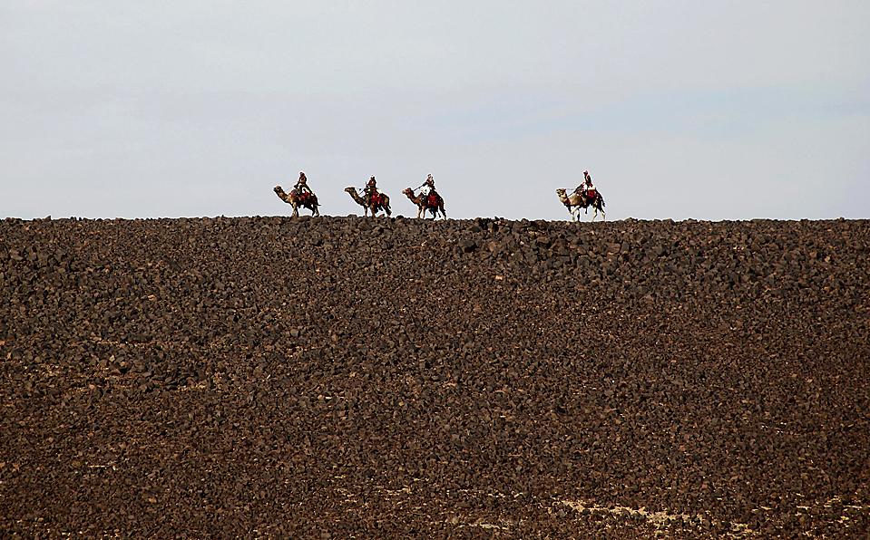 13. Военные из организации «Бадиа» из Иордании патрулируют пустыню на верблюдах на предмет обнаружения контрабандистов и незаконных беженцев у границы с Сирией. (Majed Jaber/Reuters)