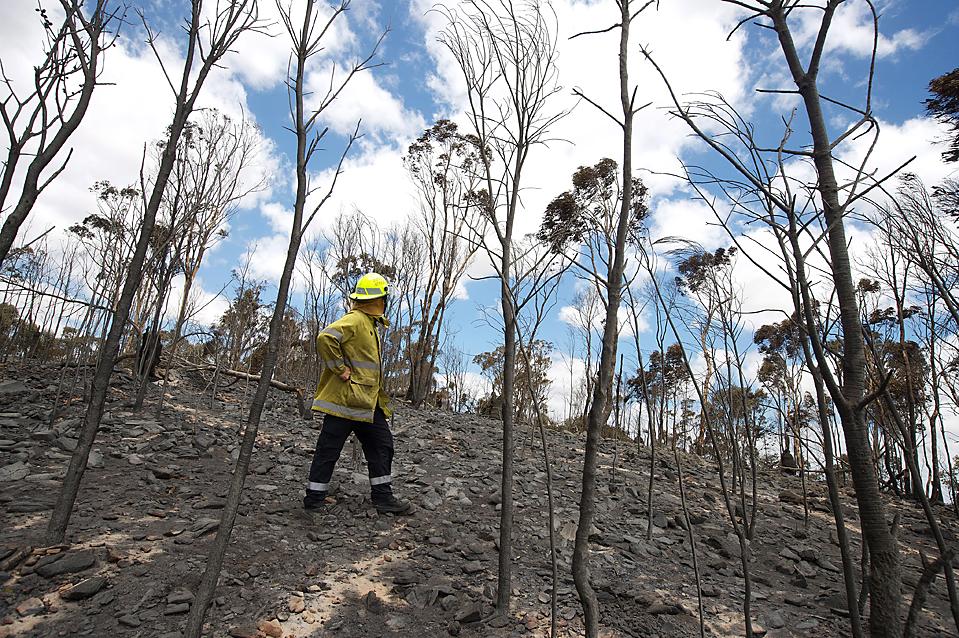 2. Пожарный осматривает ущерб от лесного пожара в Тудайе, Австралия. Два пожара, скорее всего, возникшие в результате обрыва электропроводов, сожгли более 13 354 гектаров леса и почти 40 домов. Пострадали три человека. (Tony Mcdonough/European Pressphoto Agency)