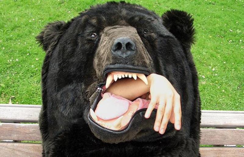 11) Спальный мешок с головой медведя для теплого и безопасного сна. (BARCROFT MEDIA)