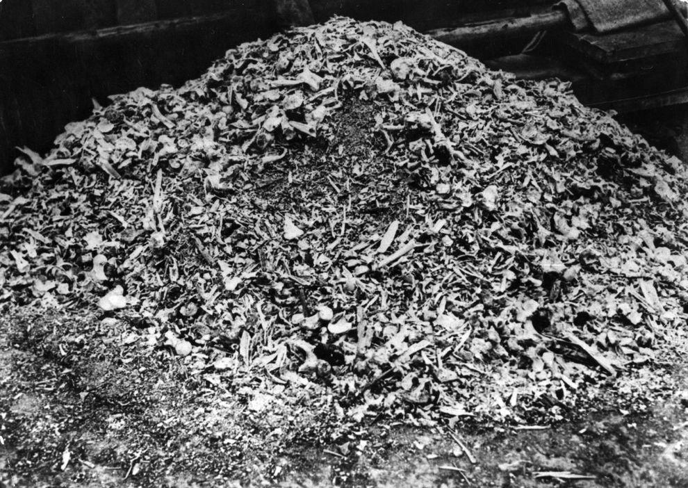 13) Груды костей в концлагере Бухенвальд. В общей сложности через лагерь прошли около четверти миллиона узников из всех европейских стран. Число жертв составляет около 56 000 человек. (Spencer Platt/ Getty Images News/ fotobank.ua / апрель 1945/ Германия, Бухенвальд)