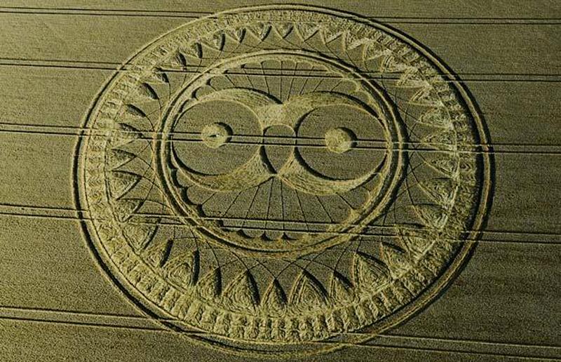 16)  Гигантский круг, напоминающий сову на поле в графстве Уилтшир. (STEVE ALEXANDER)