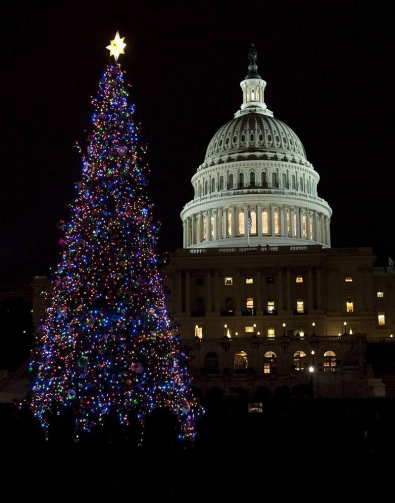 21. Капитолий и главная елка страны 8 декабря в Вашингтоне, округ Колумбия, во время ее официального зажжения. (Evan Vucci / AP)
