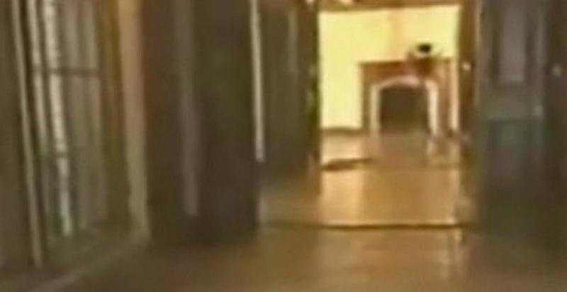 25) Поклонники Майкла Джексона убеждены, что видео показывает привидение певца в своем доме Неверленд (Neverland).