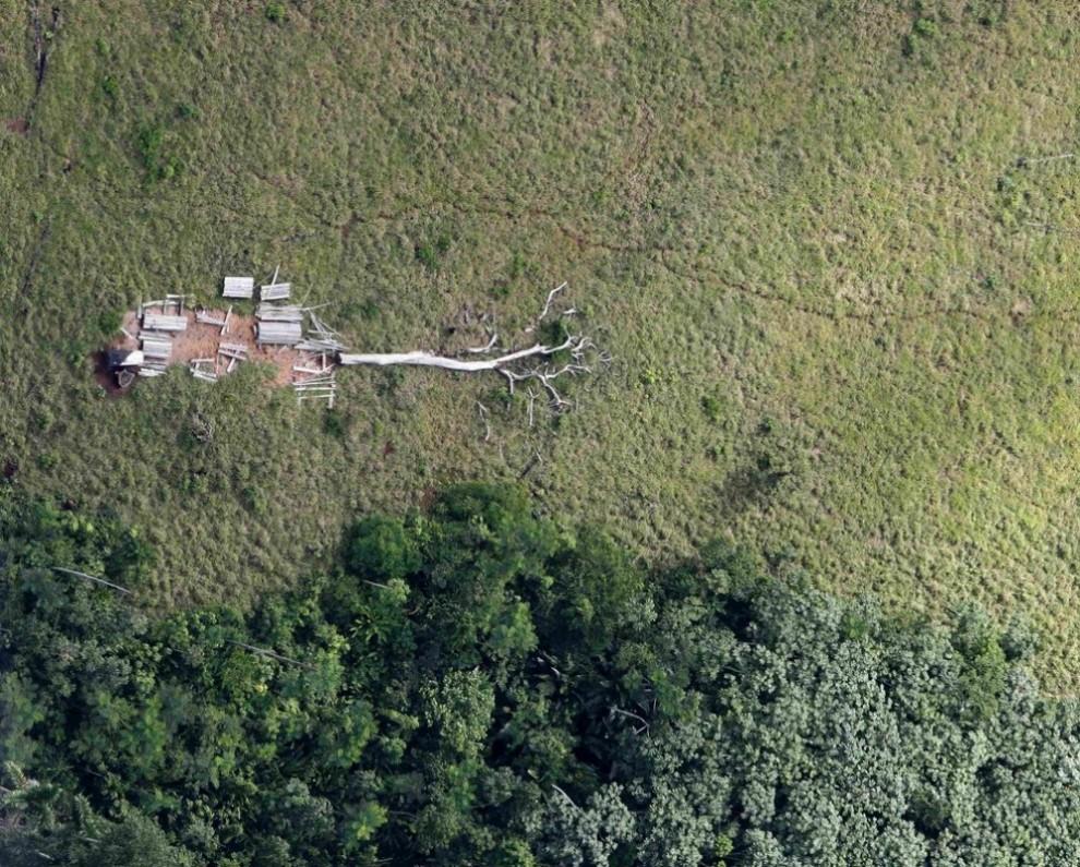22) Вид с воздуха на вырубленные амазонские джунгли рядом с Марабой в центральном Бразильском штате Пара 3 мая 2009 года. Скоро тысячи коров будут жевать траву на свежеубранных пастбищах штата Пара. Это всего лишь крошечная часть 200-миллионного стада Бразилии – крупнейшего в мире, которое делает страну мощной супердержавой по производству говядины. Более 70 миллионов из них находится в районе реки Амазонка – по три на каждого человека. Именно здесь эта индустрия выросла быстрее всего за последние годы. Говорят, все благодаря дешевой земле, распространенной нелегальной вырубке лесов и слабому давлению со стороны правительства. Снимок сделан 3 мая 2009 года. (AMAZON-CATTLE/ REUTERS/Paulo Whitaker)
