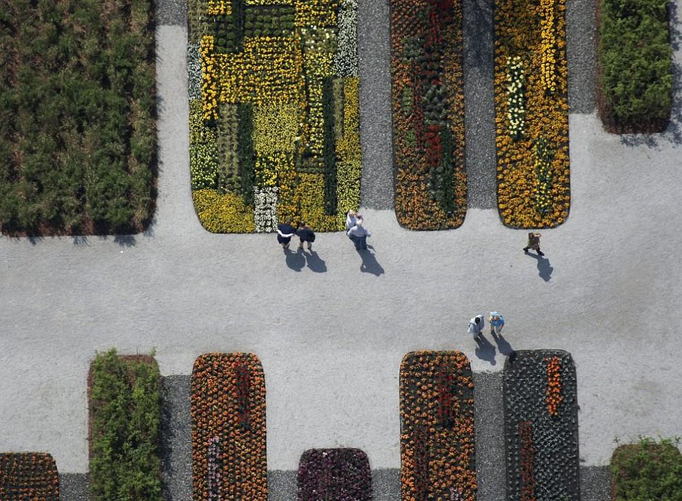 32. Вид с воздуха на ковер из цветов у западного входа на выставку 2005 в Трудеринг-Риме, Мюнхен.