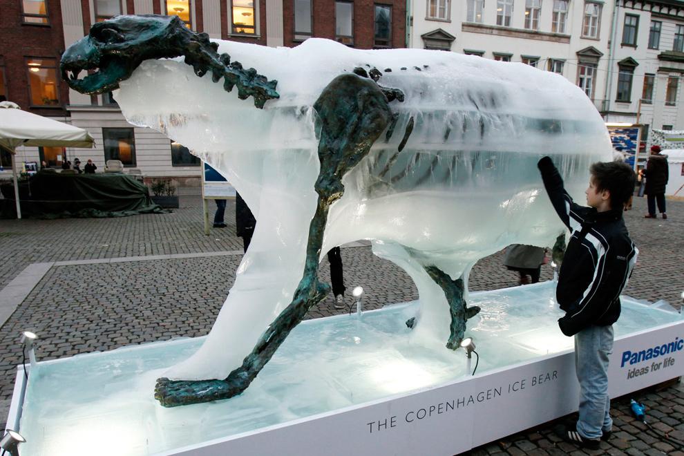 4. Мальчик прикасается к ледяной скульптуре белого медведя, которая тает и обнажает бронзовый скелет в Копенгагене, где проходила 15-ая конференция ООН по вопросам изменения климата 8 декабря 2009 года. (REUTERS/Bob Strong)