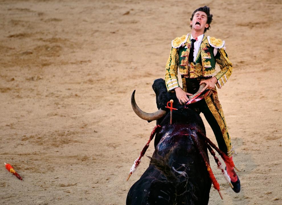 11. Бык с ранчо Пальха пронзил рогом испанского матадора Израэля Ланчо во время корриды на ярмарке Сан Исидро на арене для корриды Лас-Вентас в Мадриде 27 мая 2009 года. Ланчо госпитализировали с 20-сантиметровой раной под грудной клеткой. (AP Photo/Daniel Ochoa de Olza)