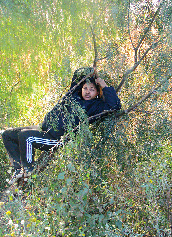 9. Орбис из Гондураса прячется на мескитовом дереве недалеко от железной дороги в ожидании поезда, идущего на север, на окраине города Салтилло, Мексика, в ноябре 2008 года. (Diana Castillo and Dariela Diaz)