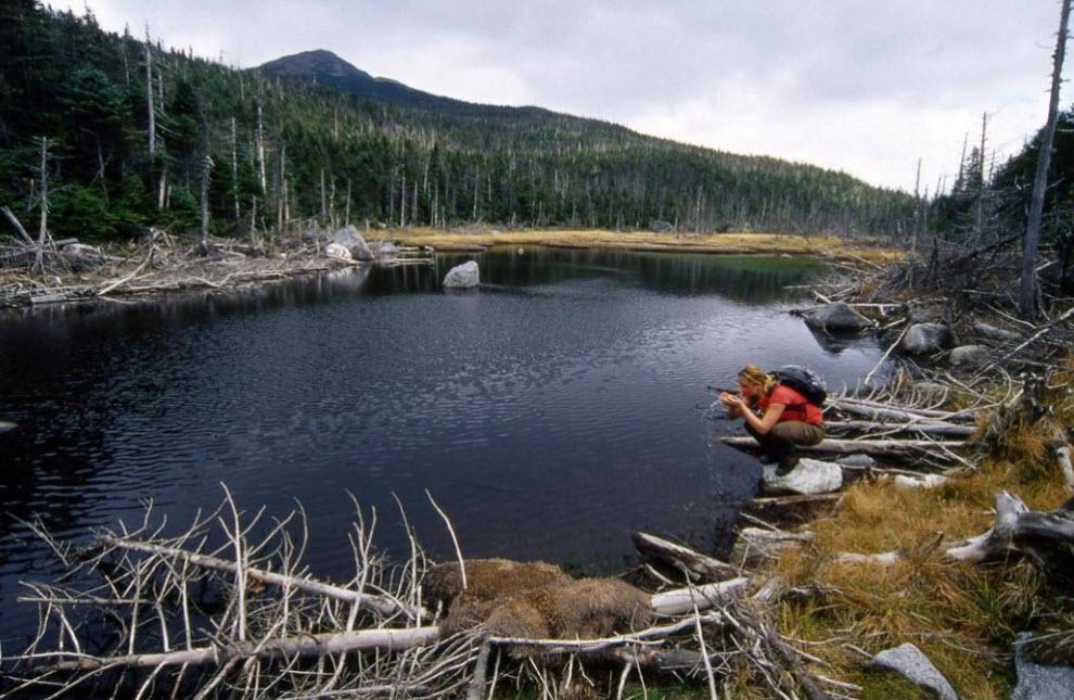 13. У подножия горы Марси самое высокое озеро штата утоляет жажду не только утомившихся путников, но и долины Гудзон. К крошечному озеру «Слеза облаков» можно подобраться только по изнурительной 27-километровой тропе, где можно встретить медведя, которая, наконец, приведет вас к тайному источнику реки Гудзон. (Peter Guttman)
