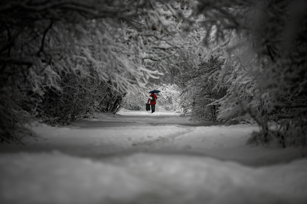 3. Женщина идет в парке во время сильного снегопада в центре Софии, Болгария, 18 декабря 2009 года. (REUTERS/Stoyan Nenov)