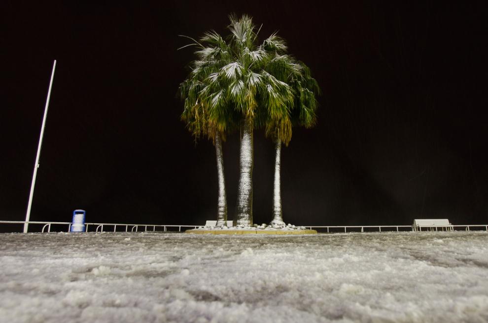 8. Пальмы на набережной «Promenade des Anglais» усыпаны снегом 19 декабря 2009 года в Ницце. Во Франции температура начала падать два дня назад, а сильный снегопад, выпавший в регионе, стал причиной проблем с транспортом. (VALERY HACHE/AFP/Getty Images)